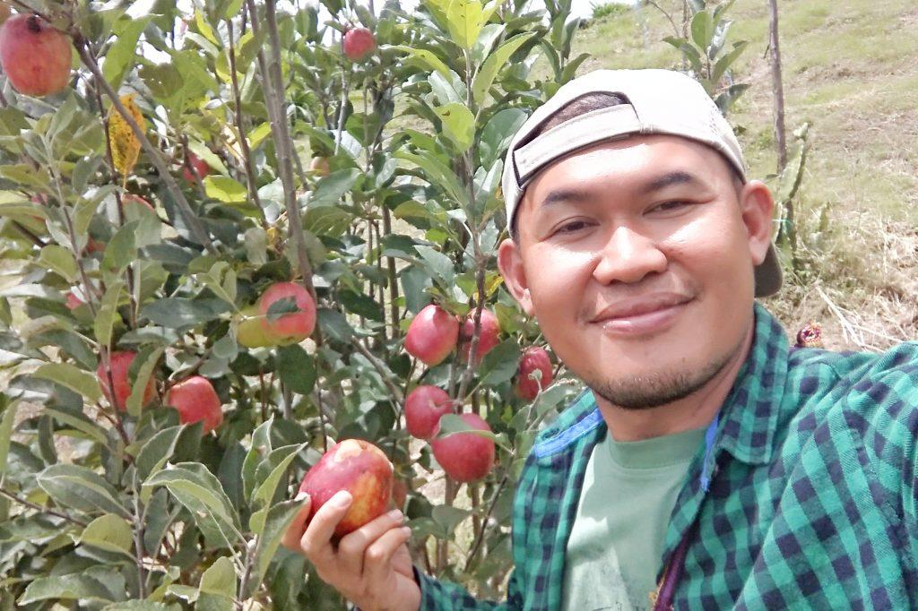 Foto dengan pohon Apel